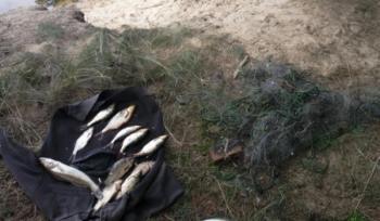 Вилучено більше 200 кг незаконно виловленої риби за тиждень, - рибоохоронний патруль Київщини