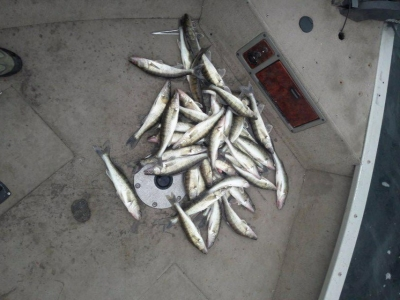За чотири дні заборони на зимувальних ямах виявлено 19 порушень, - Київський рибоохоронний патруль