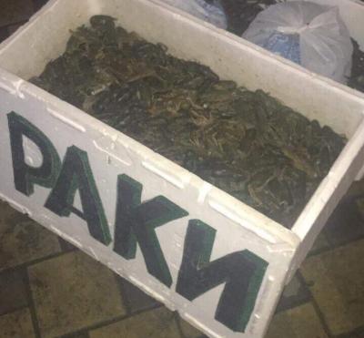 На ринках Київщини вилучено понад 84 кг незаконної риби