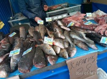 18 січня рибоохоронним патрулем Київщини було зафіксовано 11 порушень
