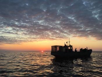 За час роботи рибного патруля Київщини промисловий вилов риби збільшився майже у 1,5 рази