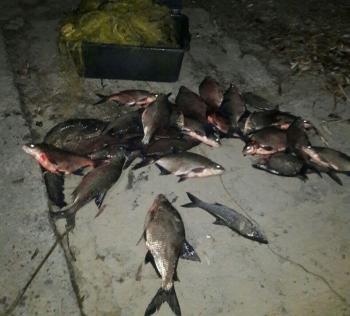 З 24 по 26 листопада Київський рибоохоронний патруль зафіксував 2 порушення правил збуту риби та затримав 2 порушників правил рибальства