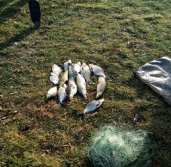 20-28 листопада рибний патруль Київщини зафіксував три порушення правил рибальства і незаконний продаж водних біоресурсів