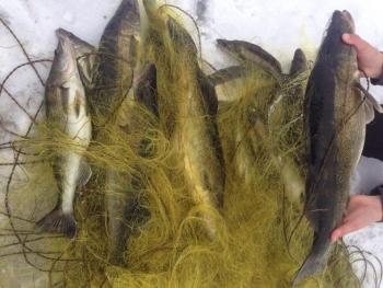 Наприкінці зими Київським рибоохоронним патрулем зафіксовано 108 порушень