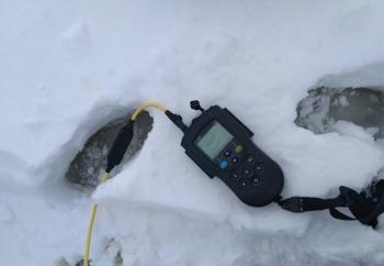 Явищ задухи на Київському водосховищі не виявлено, - Київський рибоохоронний патруль