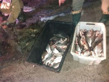 Незаконним виловом на Канівському водосховищі порушники завдали збитків на 10 тис грн