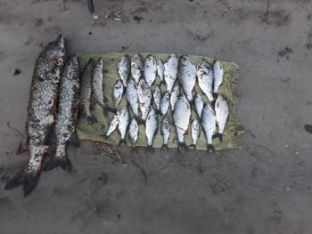 Київський рибоохоронний патруль виявив порушень на 16 тис грн за два дні роботи