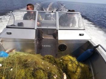Київський рибоохоронний патруль зафіксував 179 порушень протягом десяти днів