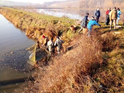 Канівське водосховище поповнилося ще 3 тоннами риби, - Київський рибоохоронний патруль