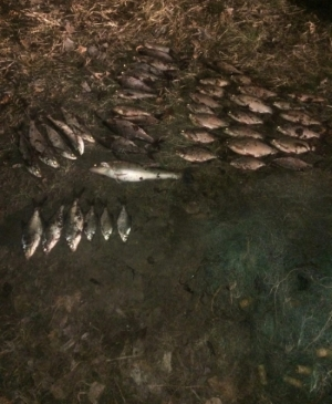 На річці Десна затримано порушників, які нанесли збитків на понад 3 тис. грн, - Київський рибоохоронний патруль