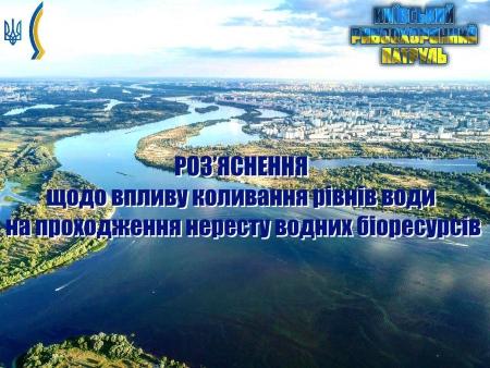 Роз'яснення щодо впливу коливання рівнів води на проходження нересту водних біоресурсів, - Київський рибоохоронний патруль