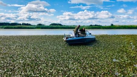 Київський рибоохоронний патруль спільно з науковцями здійснив перший експедиційний виїзд щодо проблеми водяного горіха