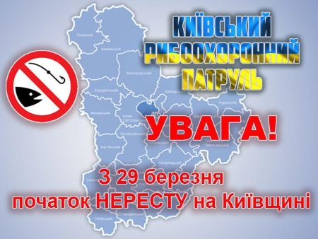 Нерестовий запрет на Київщині з 29 березня по 30 червня 2019 року