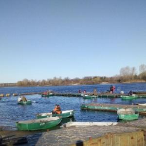 Рибоохоронний патруль Київщини контролював дотримання правил рибальства учасниками риболовного турніру