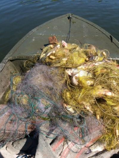 Протягом червня Київський рибоохоронний патруль викрив 218 правопорушень
