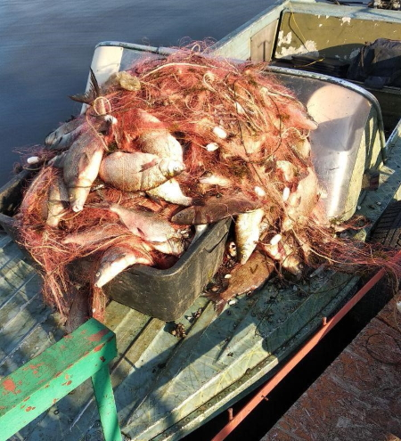Протягом 10 днів порушники завдали понад 145 тис. грн збитків, - Київський рибоохоронний патруль