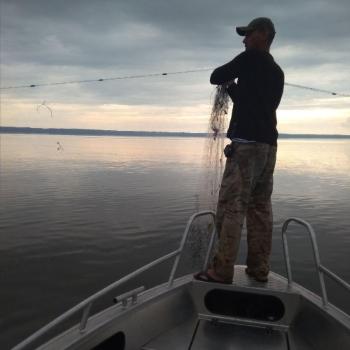 За шість днів викрито 49 порушень та зафіксовано майже 113 тис. грн збитків, - рибоохоронний патруль Київщини